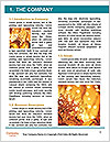 0000062254 Word Template - Page 3