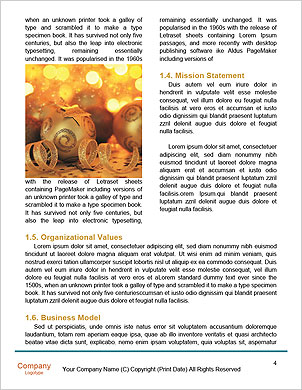 0000062254 Word Template - Page 4