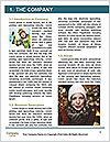 0000062262 Word Template - Page 3