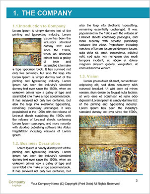 0000062266 Word Template - Page 3