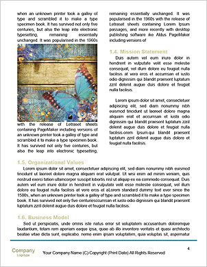 0000062266 Word Template - Page 4