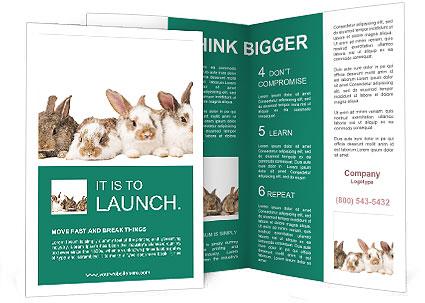 0000062277 Brochure Templates