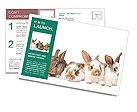 0000062277 Postcard Templates