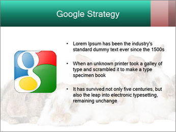 0000062277 PowerPoint Templates - Slide 10