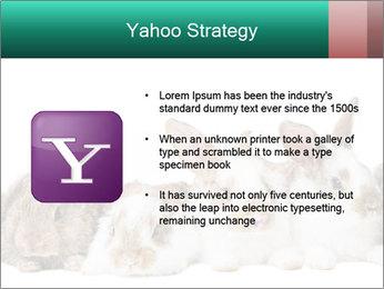 0000062277 PowerPoint Templates - Slide 11