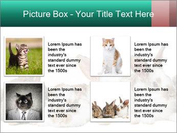 0000062277 PowerPoint Templates - Slide 14