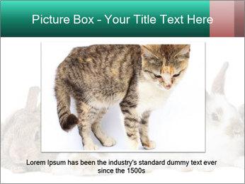 0000062277 PowerPoint Templates - Slide 16