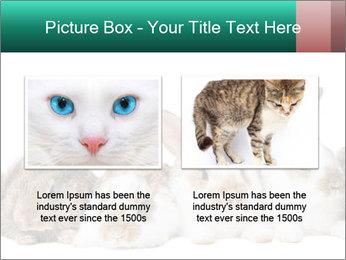 0000062277 PowerPoint Templates - Slide 18