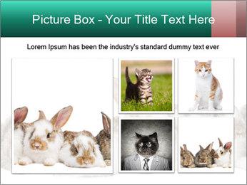 0000062277 PowerPoint Templates - Slide 19