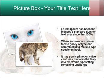 0000062277 PowerPoint Templates - Slide 20
