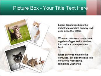 0000062277 PowerPoint Templates - Slide 23