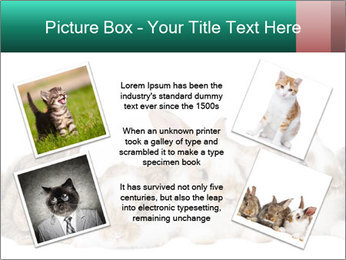 0000062277 PowerPoint Templates - Slide 24