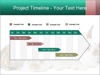 0000062277 PowerPoint Templates - Slide 25