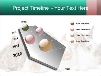 0000062277 PowerPoint Templates - Slide 26