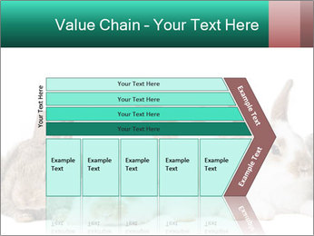 0000062277 PowerPoint Templates - Slide 27