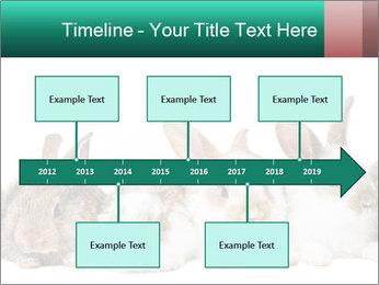 0000062277 PowerPoint Templates - Slide 28