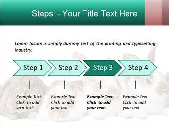 0000062277 PowerPoint Templates - Slide 4
