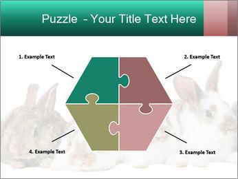 0000062277 PowerPoint Templates - Slide 40