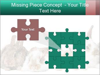 0000062277 PowerPoint Templates - Slide 45