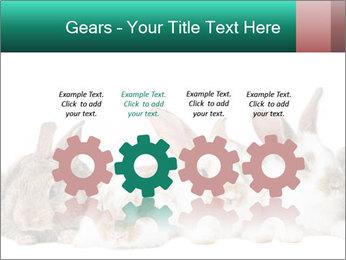 0000062277 PowerPoint Templates - Slide 48