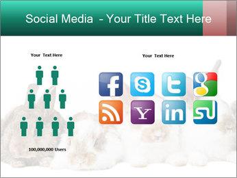 0000062277 PowerPoint Templates - Slide 5