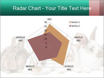 0000062277 PowerPoint Templates - Slide 51