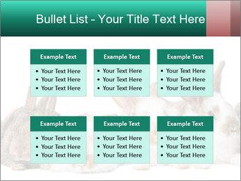 0000062277 PowerPoint Templates - Slide 56