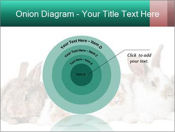 0000062277 PowerPoint Templates - Slide 61
