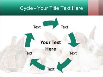 0000062277 PowerPoint Templates - Slide 62