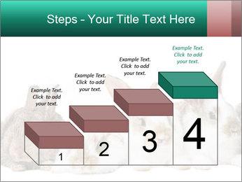 0000062277 PowerPoint Templates - Slide 64