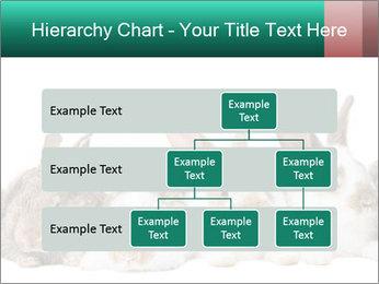0000062277 PowerPoint Templates - Slide 67