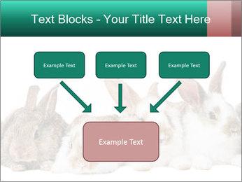 0000062277 PowerPoint Templates - Slide 70