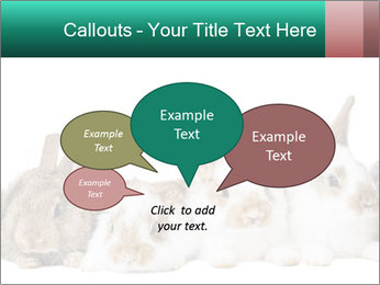 0000062277 PowerPoint Templates - Slide 73