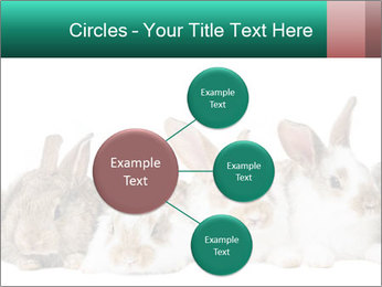 0000062277 PowerPoint Templates - Slide 79