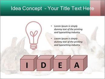 0000062277 PowerPoint Templates - Slide 80