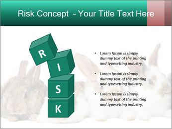 0000062277 PowerPoint Templates - Slide 81