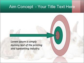 0000062277 PowerPoint Templates - Slide 83