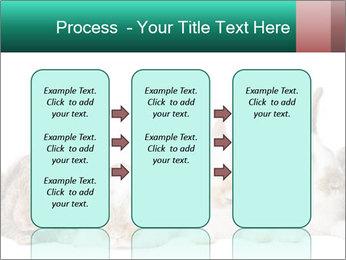 0000062277 PowerPoint Templates - Slide 86