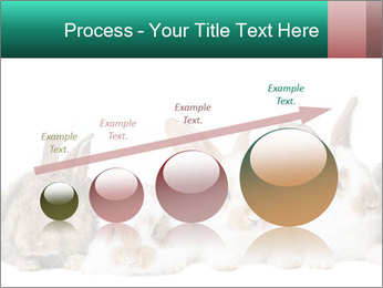 0000062277 PowerPoint Templates - Slide 87