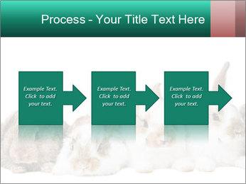 0000062277 PowerPoint Templates - Slide 88