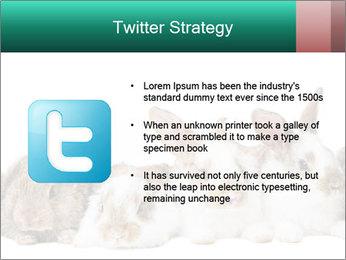 0000062277 PowerPoint Templates - Slide 9