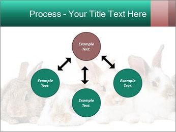 0000062277 PowerPoint Templates - Slide 91