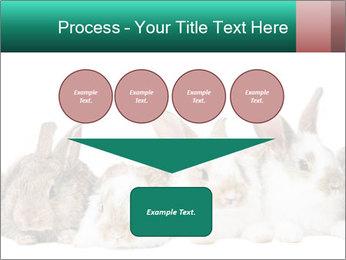 0000062277 PowerPoint Templates - Slide 93
