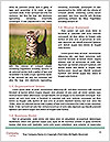 0000062277 Word Templates - Page 4