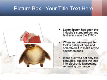 0000062278 PowerPoint Templates - Slide 20