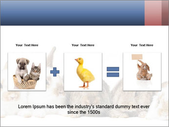 0000062278 PowerPoint Templates - Slide 22