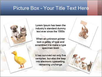 0000062278 PowerPoint Templates - Slide 24