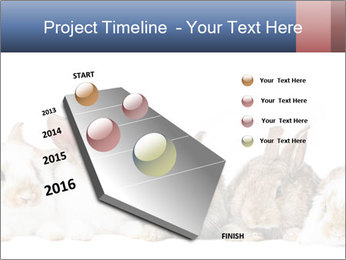 0000062278 PowerPoint Templates - Slide 26