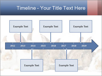 0000062278 PowerPoint Templates - Slide 28