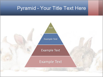 0000062278 PowerPoint Templates - Slide 30